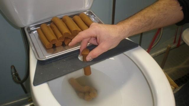 testeur toilettes
