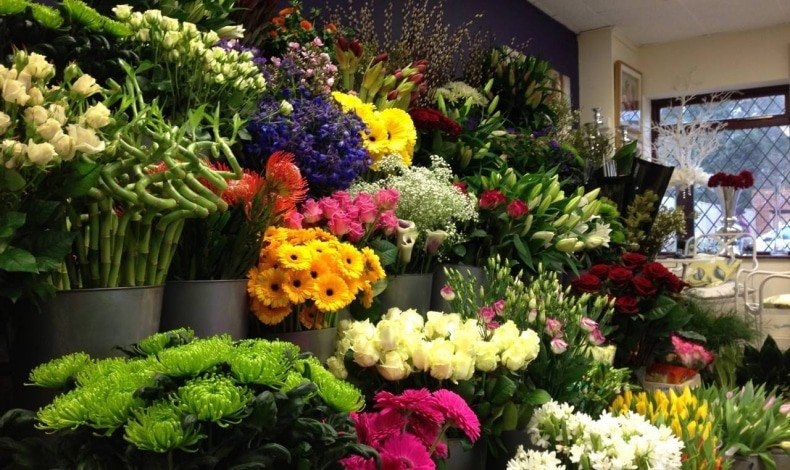 comment devenir fleuriste