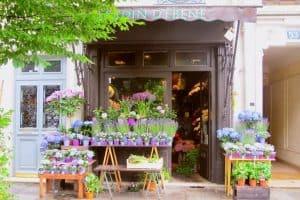 magasin de fleures