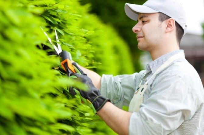 Comment devenir jardinier : formation, salaire et débouchés