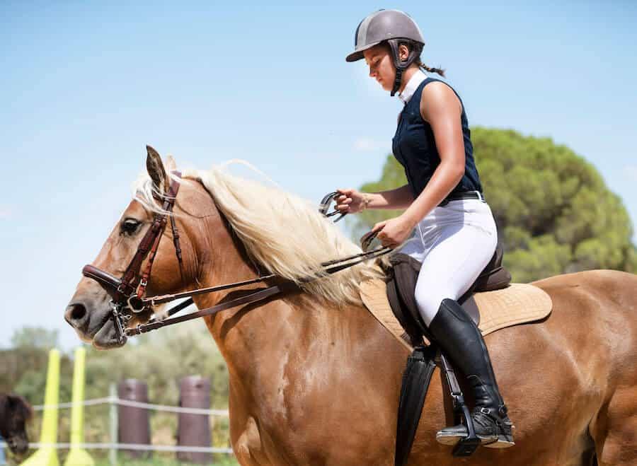 moniteur equitation